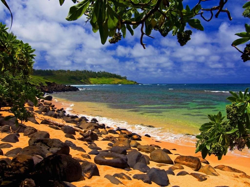 hawaii-cruceros