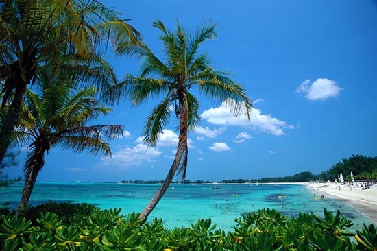 Vista de una paradisíaca playa del Seatrade Caribbean Cruise