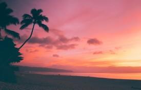 cruceros-hawai